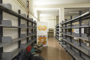 6. Biblioteca work in progress