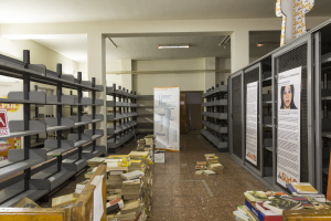 5. Biblioteca work in progress